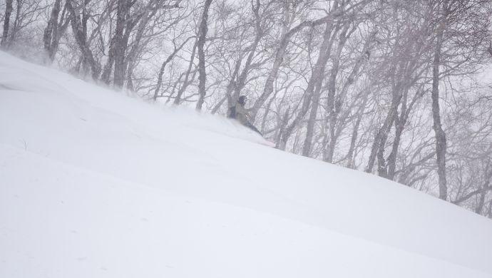 飞驰电掣,穿越长白山越野滑雪森林公园