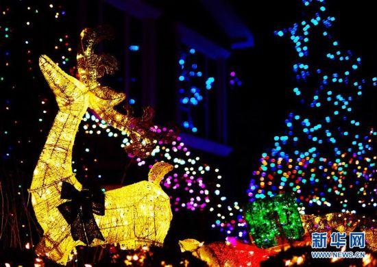 """纽约布鲁克林""""圣诞小镇""""盛装迎圣诞6"""