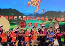2017中國—東盟傳統醫藥健康旅遊國際論壇