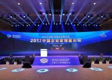 中國企業家博鰲論壇現場圖集