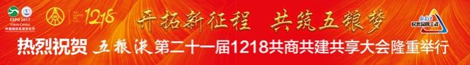 2017中國國際名酒文化節·五糧液