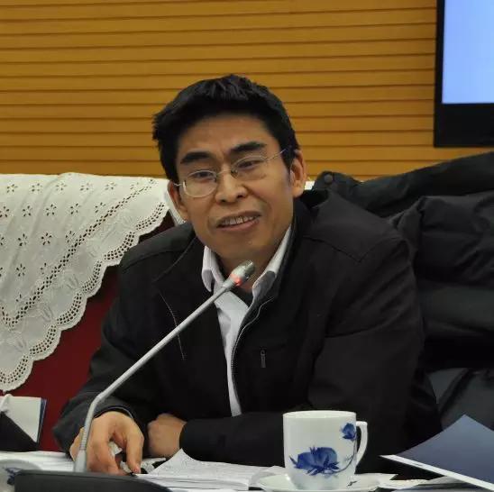 国务院发展研究中心外经部综合研究室主任罗雨泽发言