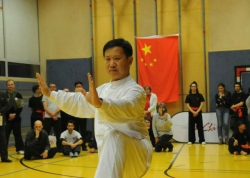 """""""一带一路""""中国太极文化世界行活动亮相维也纳"""