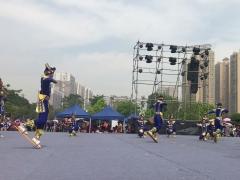 """广西""""壮族三月三•民族体育炫""""《板鞋龙》"""