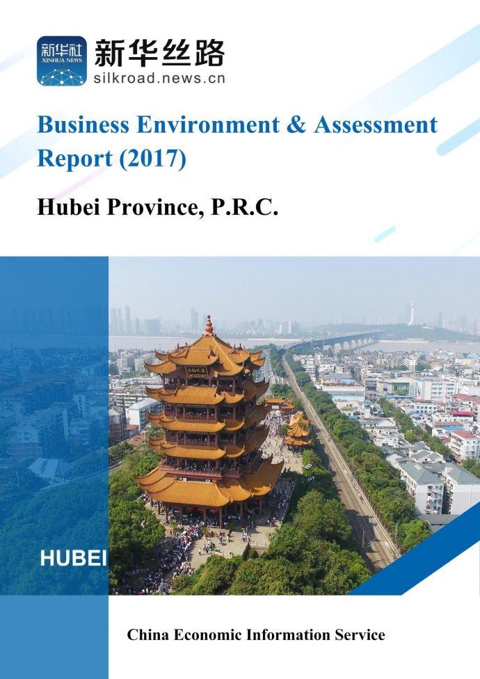 2017湖北营商环境评估报告(英文版)