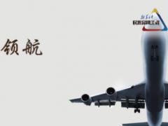 新华社民族品牌工程的365天