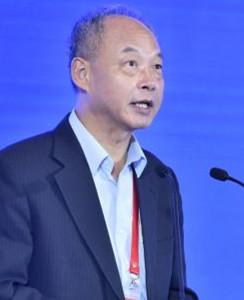 杨永斌 奥地利科学院院士、中国工程院院士、欧洲科学院院士
