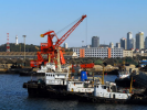 从烟台港集团获悉,今年上半年该港完成货物吞吐量1.6亿吨,完成集装箱吞吐量151万标箱。今年以来,烟台港铝矾土、原油、商品车、集装箱、客滚等业务实