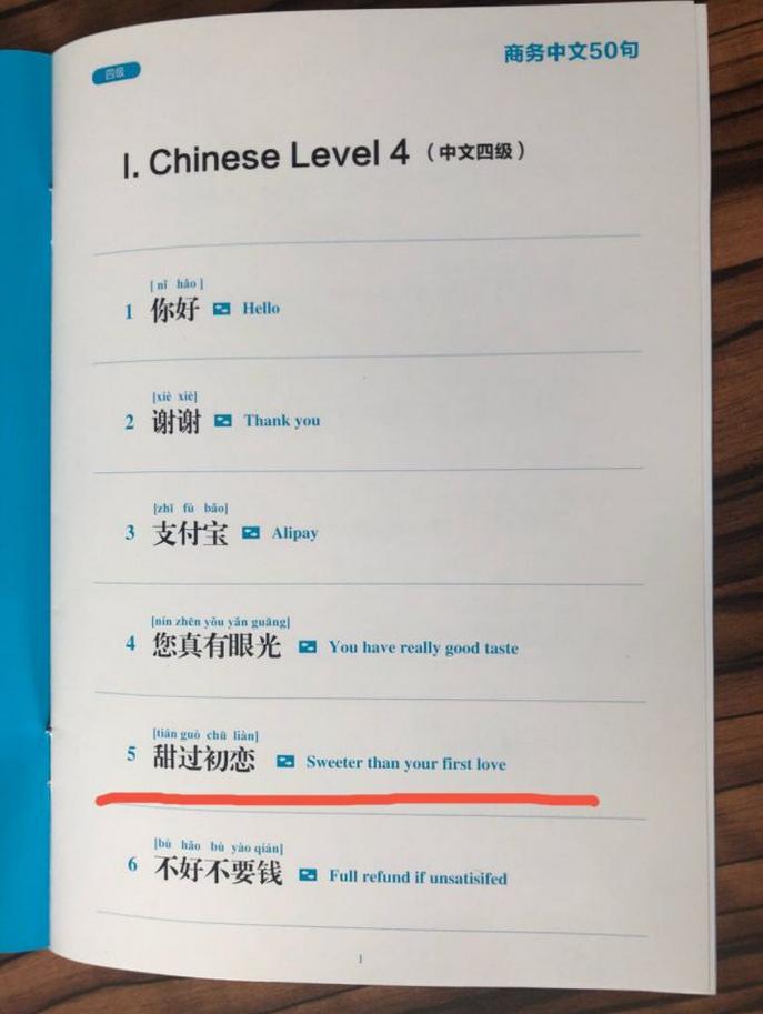 支付宝推出蓝宝书《商务中文50句》 外国商户:简直是我们的福星!2