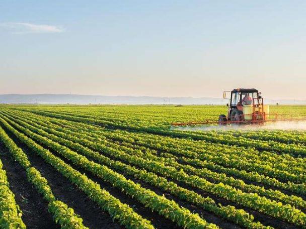 农业农村经济发展