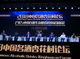 高清组图:2018中国名酒杏花村论坛