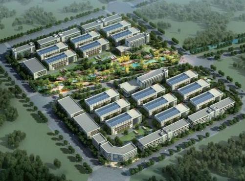 河北新河:推动构建大扶贫格局