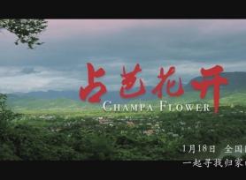 中老首部合拍电影《占芭花开》:过年了,回家看看吧