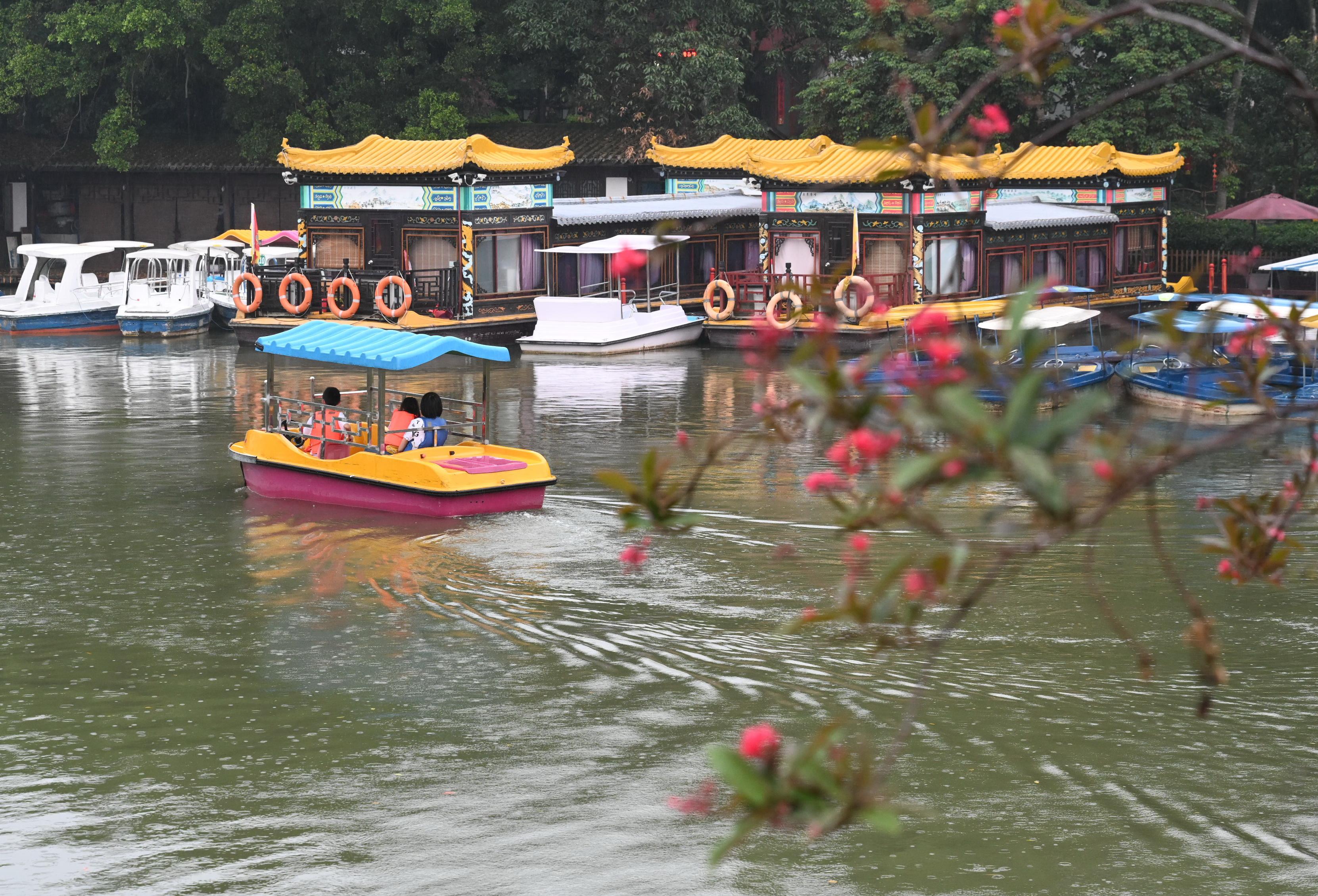 新华社照片,福州,2020年5月5日 5月5日,游客在福州西湖泛舟赏景。 新华社记者 林善传 摄