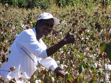 中非棉业项目
