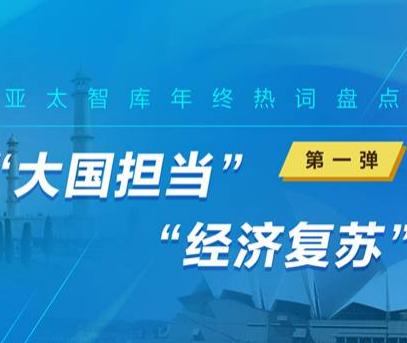 """【新华丝路年终盘点】2020年亚太智库研究""""新风向"""""""