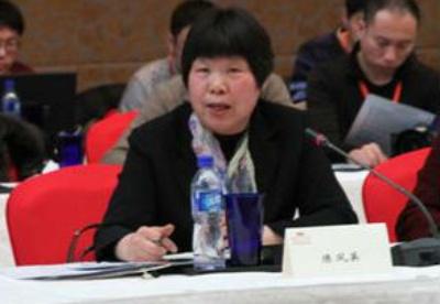 """陈凤英:""""一带一路""""倡议是全球经济治理新模式"""