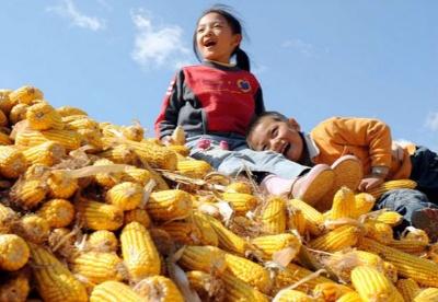 甘肃推进农业供给侧结构性改革