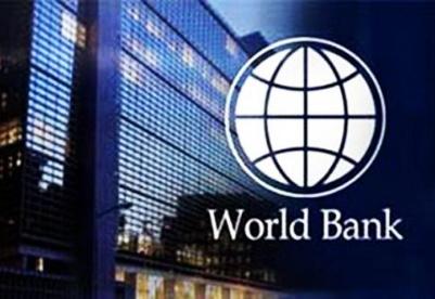 世界银行的发展问题:聚焦机构改革及激励机制变化