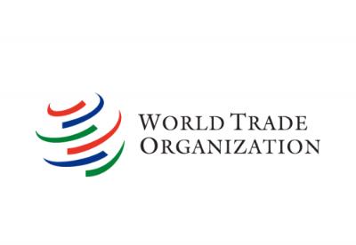 外交部:少数WTO成员企图逃避责任