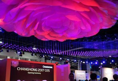 【视频】中国新创企业CES觅机遇