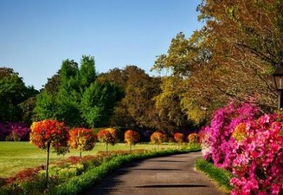 复兴花园城市传统的计划为何受欢迎
