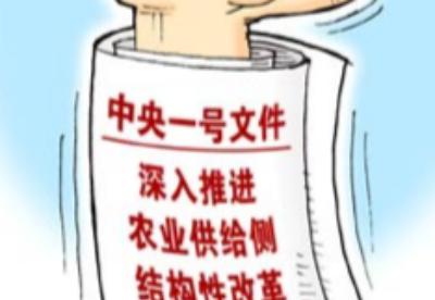"""中央一号文件发布 撬动资金投入""""三农""""为一大亮点"""