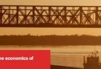 基础设施投资经济学指南