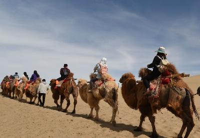 敦煌鸣沙山上体验大漠驼队