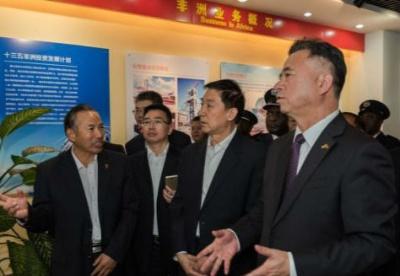 国务委员王勇视察中国有色集团赞比亚出资企业