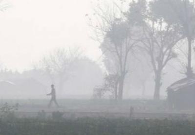对新德里空气质量的不满能否推动印度的环保事业?