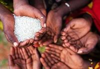 英国智库表示应客观看待非洲债务问题