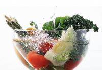 中美企业合作研发推广蔬果降农残保鲜技术与产品