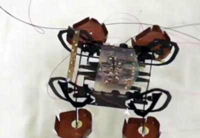 铁掌水上漂!超可爱的蟑螂机器人