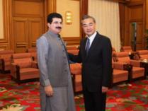 王毅会见巴基斯坦参议院主席桑吉拉尼