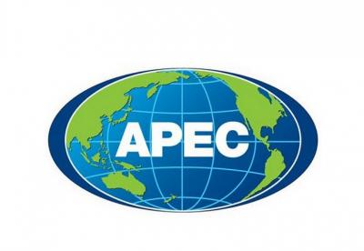 """APEC高官会议推进实现""""茂物目标""""及""""后2020愿景"""""""