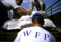 世界粮食计划署是什么?