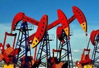 埃及与俄罗斯上半年贸易额同比增长37%,俄罗斯在埃投资主要集中在油气领域
