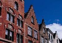 """综述:荷兰工商界期待巩固中欧经贸""""桥头堡""""地位"""