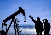 尼日利亚在3年内实现石油收入1.7万亿奈位