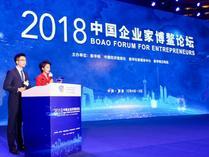 """""""2018中国企业家博鳌论坛""""现场"""