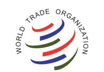 尼日利亚应该放弃与WTO的电子商务条约