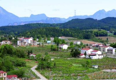 陕西今年将建设200个以上乡村振兴示范村