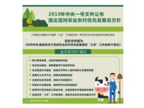 2019年中央一号文件公布 提出坚持农业农村优先发展总方针