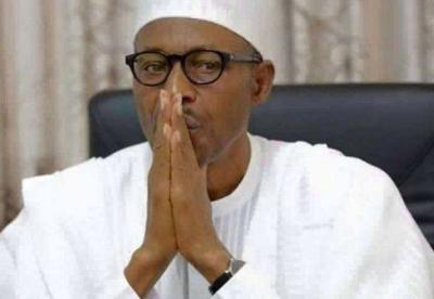 布哈里成功连任尼日利亚总统