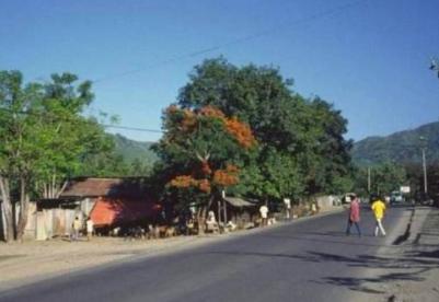 通讯:受欢迎的小黄帽——中企承建东帝汶第一条高速公路
