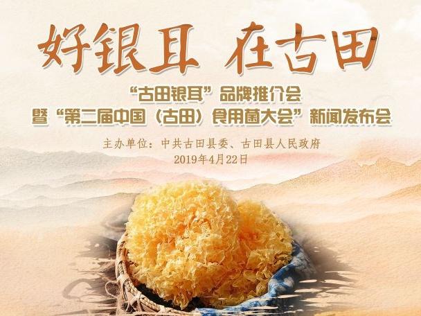 第二届中国(古田)食用菌大会新闻发布会