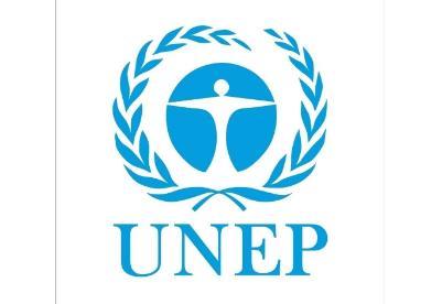 """专访:""""一带一路""""项目帮助受惠国可持续发展——访联合国环境规划署代理执行主任姆苏亚"""