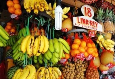 菲律宾第一季度水果产量下降