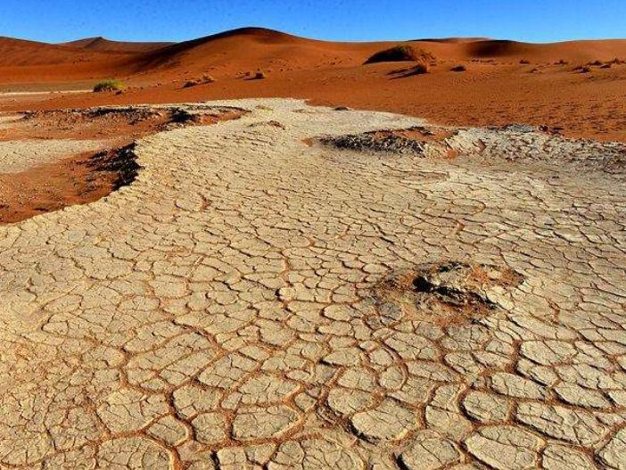 纳米比亚因旱情进入紧急状态